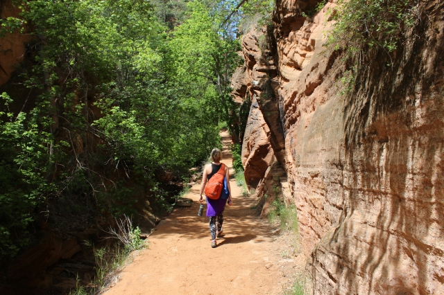 zion-lake-of-fire-lake-mead-trip-may-2015-698